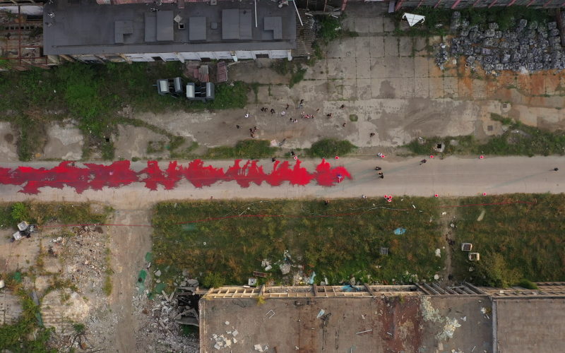 Smirna Kulenovic, Pure Blood, 2019 Performance and Public Space Installation